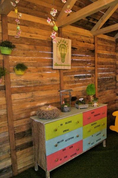 collezione piante