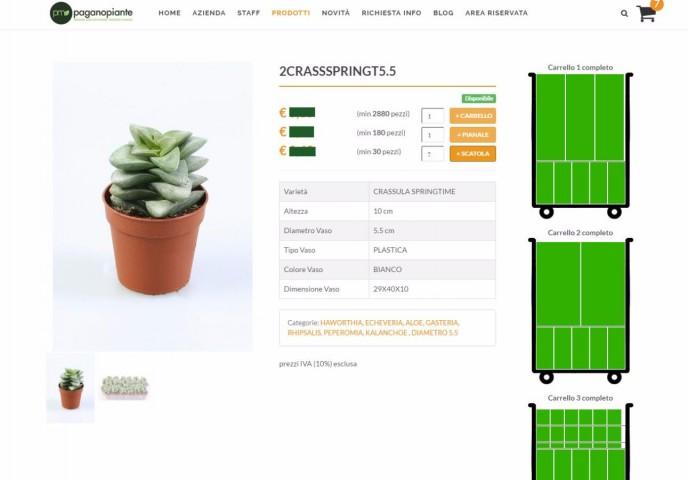 shop online paganopiante