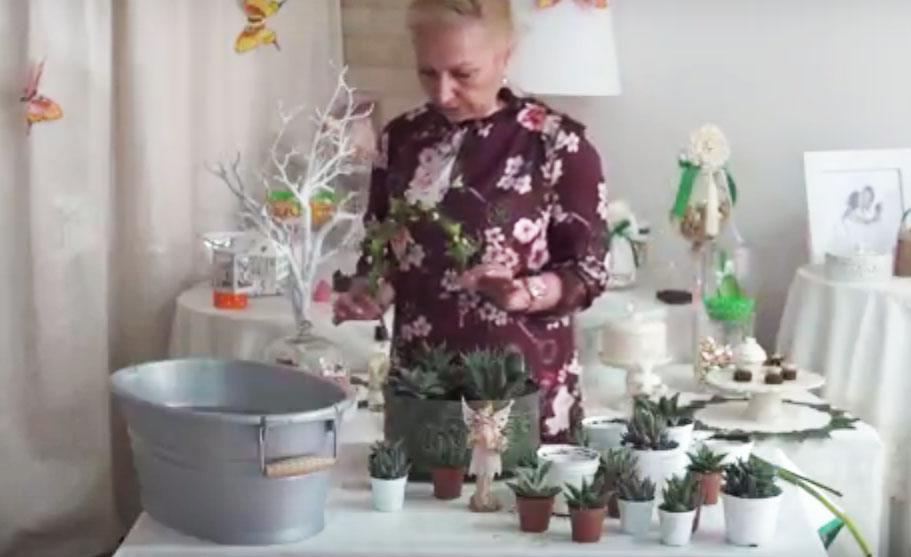 Fairy garden con succulente