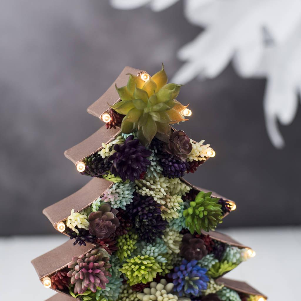 Creare Composizioni Per Natale succulente per natale: idee da copiare per realizzare
